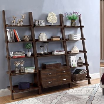 Darcus Ladder Bookcase