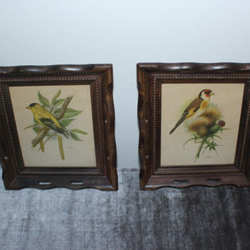 Vintage Ph. Gonner Wood Framed Bird Prints, bird decor, wall art