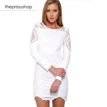 Snow White Mesh Lace Dress