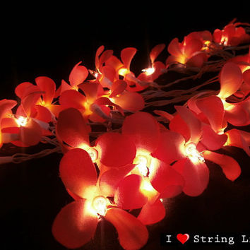 35 of Red Frangipani Flower String Lights For Wedding and House decoration (35 Flowers/Set)