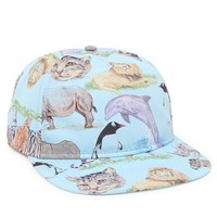 Neff Colored Pencil Safari Snapback Hat - Mens Backpack - Sky - One
