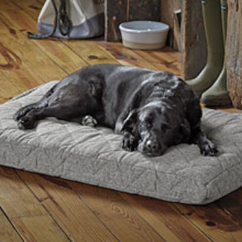 Dream Lounger Memory Foam Dog Bed