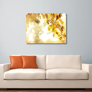Golden Sunlight - Fine Art Photography, Yellow Fall Foliage, Trees, Leaves, Autumn, Brown, Dreamy Wall Art