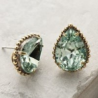 Sorrelli Carinae Earrings