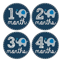 Pinkie Penguin Elephant Baby Monthly Stickers - Milestone Onesuit Stickers - 1-12 Months - Baby Boy Month Stickers