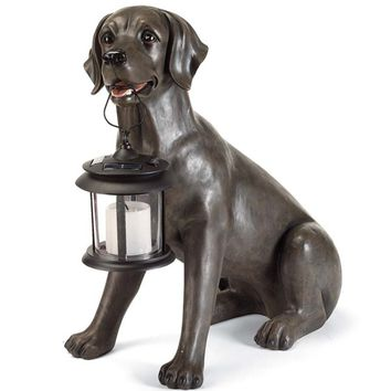 Outdoor Lab Statue With Solar Lantern | Solar Lighting