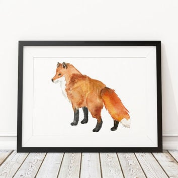 Animal art Watercolor fox print Nursery decor ACW43