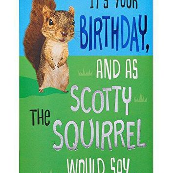 American Greetings Funny Squirrel Birthday Card with Foil - Funny Greeting Cards - Free Shipping