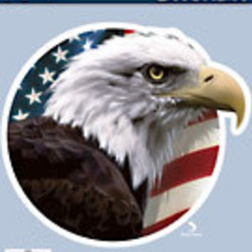 American Eagle Car Decal