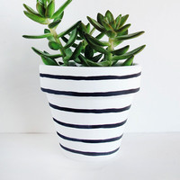 Black & White Stipe Hand Painted Plant Pot - 11cm by This Way To The Circus