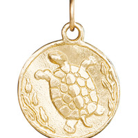 Turtle Coin Charm