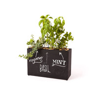 Chalkboard Planter - Self-Watering, Self-Feeding, and Fertile with Success
