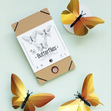 Model Butterfly DIY Kit