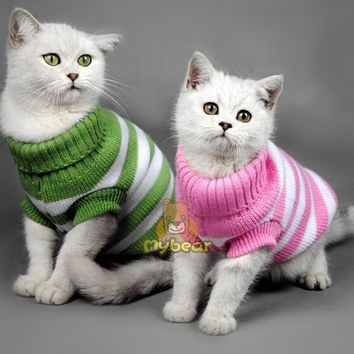 Candy Stripe Color Winter Spring Cat Sweater