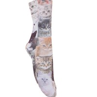 With Love From CA Cats On Cats Socks - Womens Scarves - Natural - One