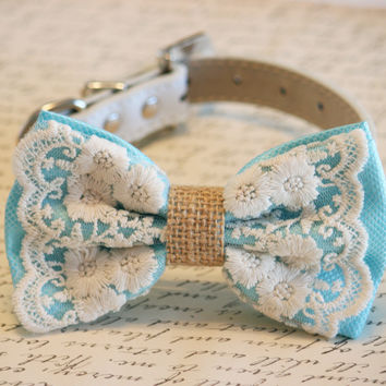 Blue Dog Bow Tie, Lace and Burlap, Rustic, boho