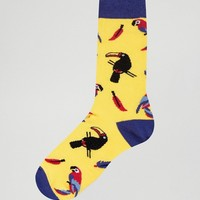 Urban Eccentric Tropical Bird Socks at asos.com