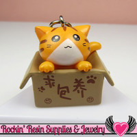 Orange Anime CAT in a BOX Cellphone Dust Plug Charm or Cabochon