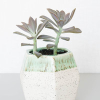 Ben Fiess Faceted Planter - Lime