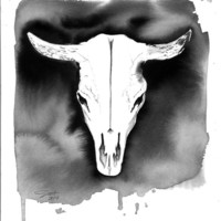 Cow Skull, print from original watercolor and pen illustration by Jessica Durrant