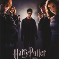 Harry Potter and the Order of the Phoenix Movie Poster (11 x 17 Inches - 28cm x 44cm) (2007) Style B -(Daniel Radcliffe)(Rupert Grint)(Emma Watson)(Helena Bonham Carter)(Robbie Coltrane)(Ralph Fiennes)