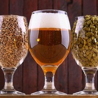 Home Beer Brewing Kit: Which One Is the Best Beer Production Kit for You? | SoWiseup