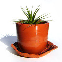 Red Terracotta Clay Easter Flower Pot - Medium Pottery Vase - Perfect Ceramic Succulent Planter - Air Plant or herb garden