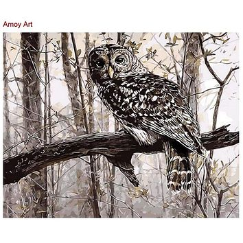 Frameless painting by numbers Animal Owl picture diy digital oil painting gift paint by number kits gift cuadros decor