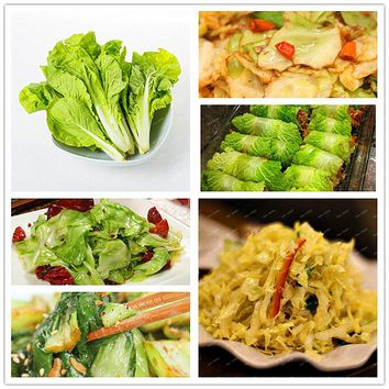 100PCS Chinese Yellow Delicious Cabbage Seeds High Nutritious Green Vegetable Seeds Potted Plants Garden Supplies Easy to Grow