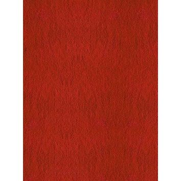 PRINTED BACKGROUND RED CARPET FLOOR VINYL BACKDROP - 5x6 - LCCR9999 - LAST CALL