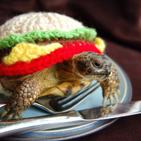 Cheeseburger tortoise cozy - made to order