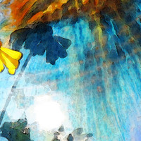 In My Shadow - Yellow Daisy Art Painting