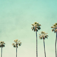 Palm Trees Stretched Canvas by Bree Madden | Society6