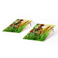Rosie Brown Glorious Garden Cornhole Set