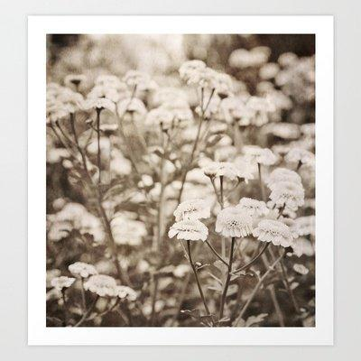 Roaming Through Wild Flower Fields Art Print by Joy StClaire | Society6