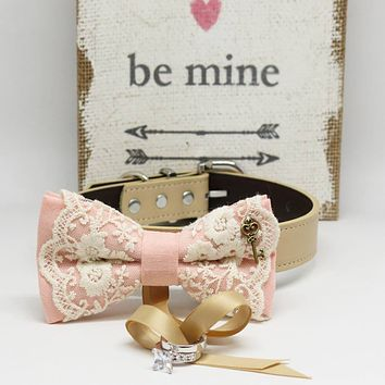 Blush Lace dog bow tie Ring Bearer collar, Charm (Key to my Heart), Proposal, Pet wedding