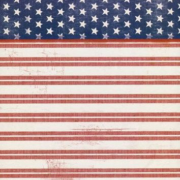 Stars and Stripes Backdrop - 2394
