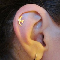 Sparrow Bird Cartilage Earring Tragus Helix Piercing