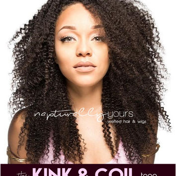 FREE SHIPPING afro kinky curly human hair wig full lace wigs 100% remy human hair & synthetic wigs