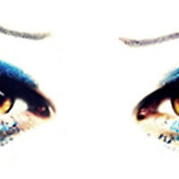 'Hedwig's Eyes - DARREN CRISS' Photographic Print by kalingcriss