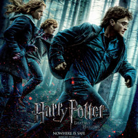 Harry Potter and the Deathly Hallows Part 1 Poster v11