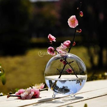 Clear Glass Flower Planter Vase Terrarium Container Home Garden Ball Decor