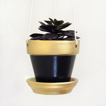 Hanging Planter, Succulent Planter, Terracotta Pot, Modern Planter, Succulent Pot, Air Planter, Indoor Planter, Black Planter, Gold Planter
