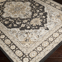 Paramount Area Rug |  Classic Rugs Machine Made | Style PAR1057
