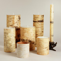 Birch Bark Candles - World Market