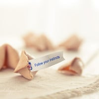 Follow your instincts fortune cookie photograph by GoldenSection
