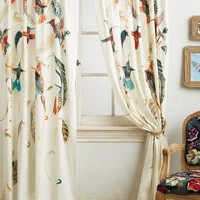 Michelle Morin Nests & Nectar Curtain in Multi Size: