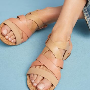 Vicenza Rose Sandals