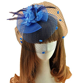 Women's Fascinator Clip Veil Cocktail Tea Party Church Hat Bridal Headpiece (Blue )