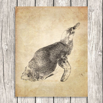 Vintage Penguin Picture - Antique Vintage Wall Art - Illustration Home Decoration - DIY Printable Digital File